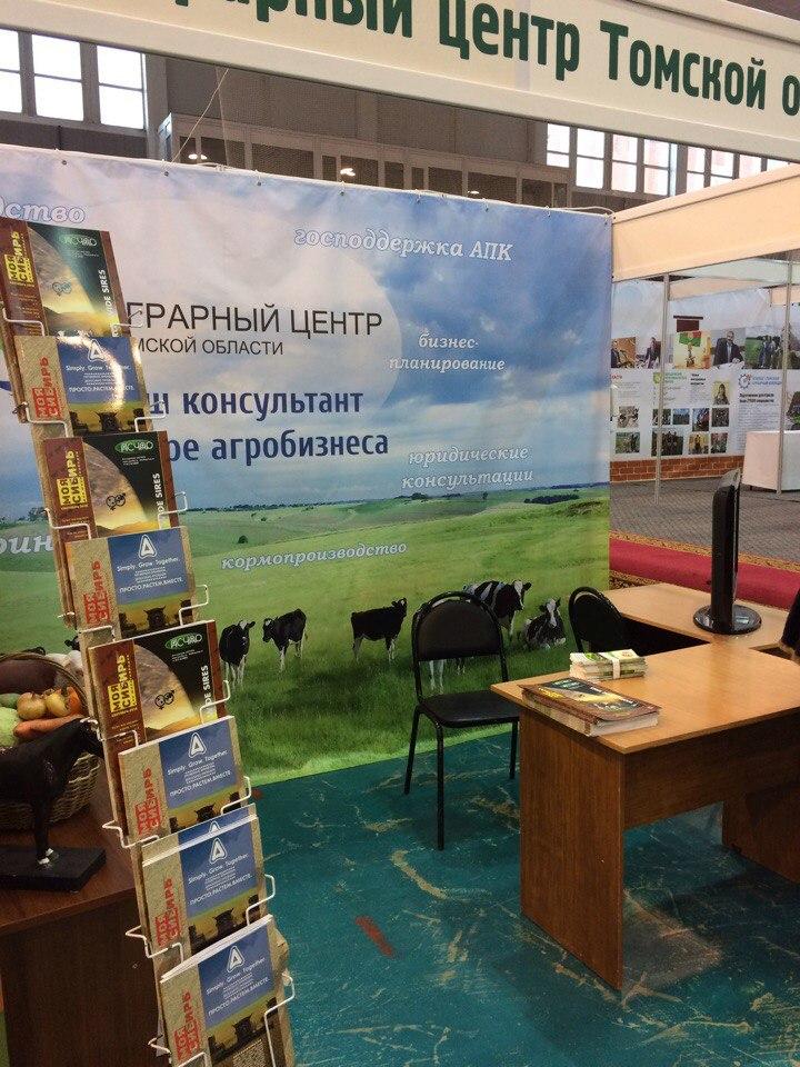 4Zolotaja osen – 2016 Tomsk