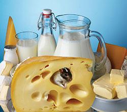 молокорастительные продукты