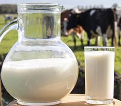 реализация молока