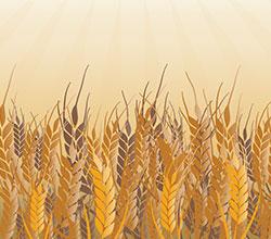 субсидии в сельском хозяйстве