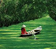 Вьетнам-EXPO-Сибирь
